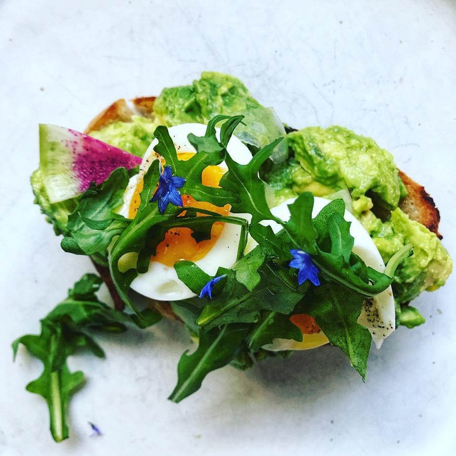 misfit wellness meal ideas