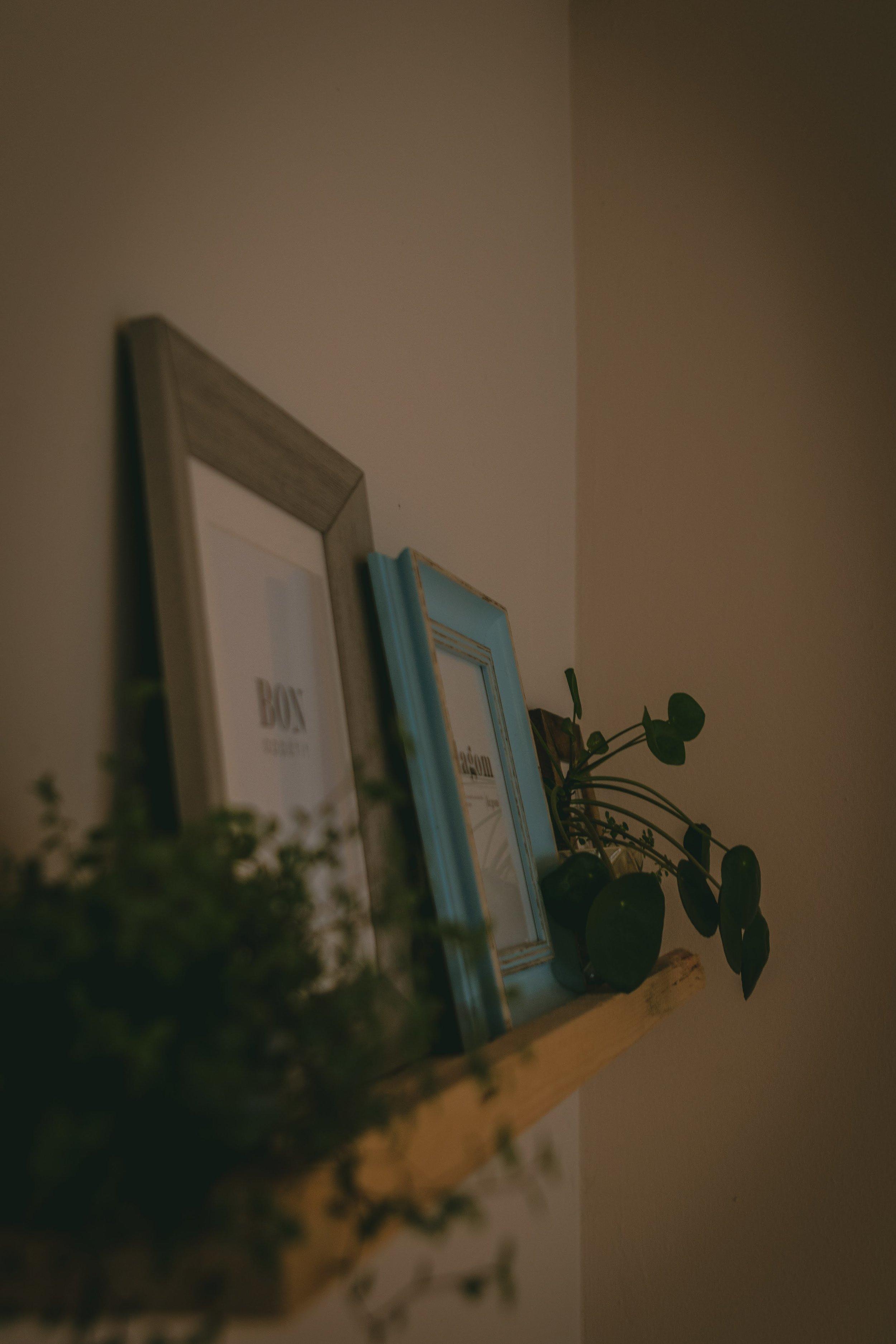 Cafe Hase-10.jpg