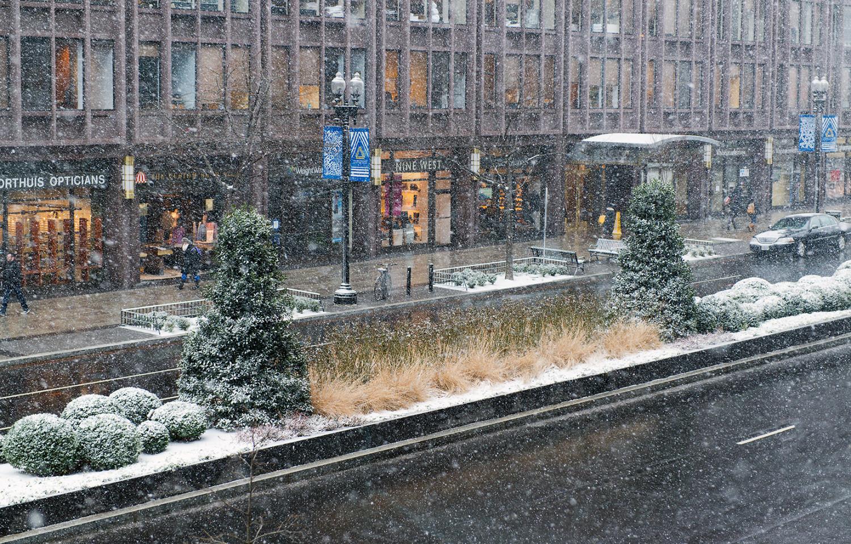 The median in winter.