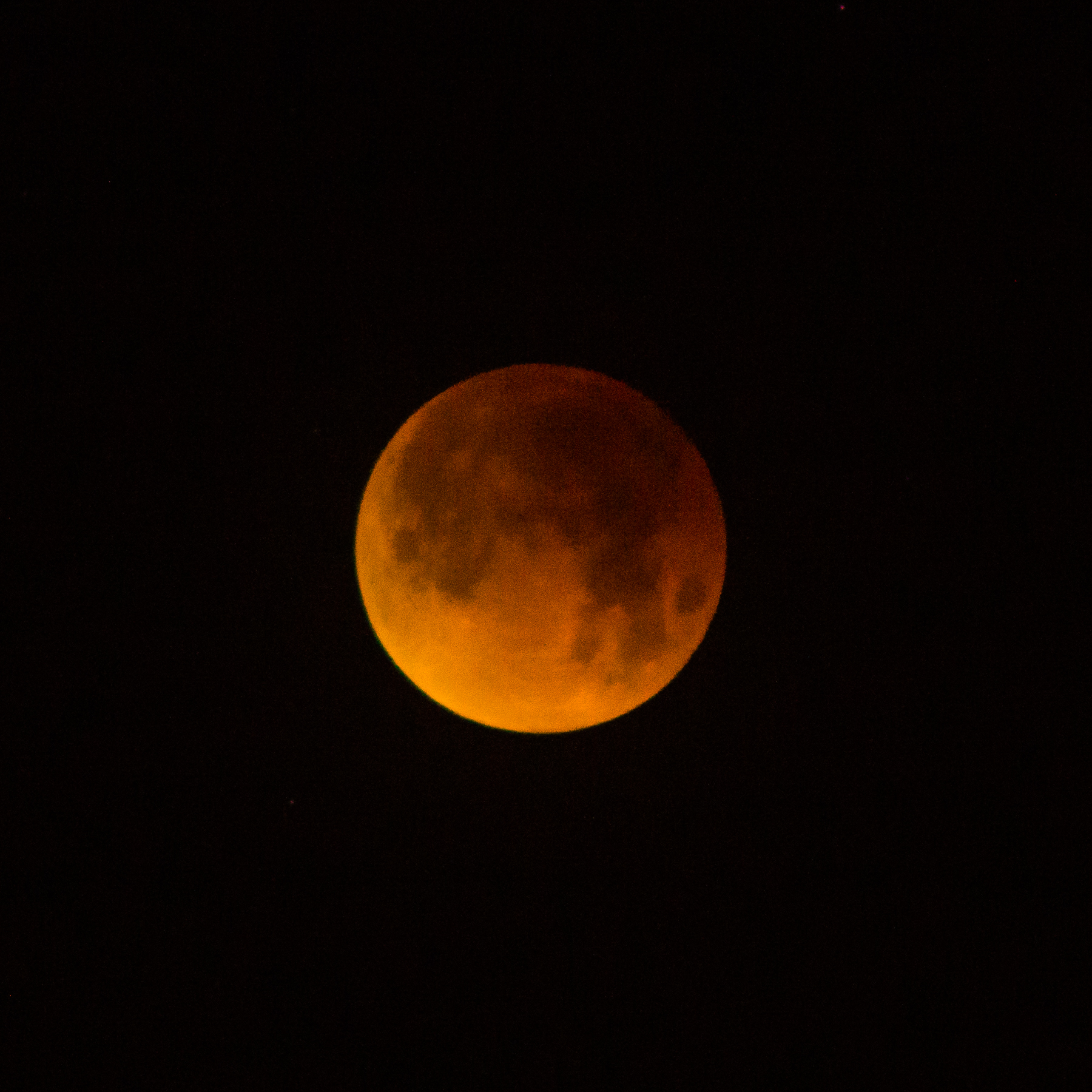 Here is the blood moon that everyone raves about at 300mm and cropped as well.