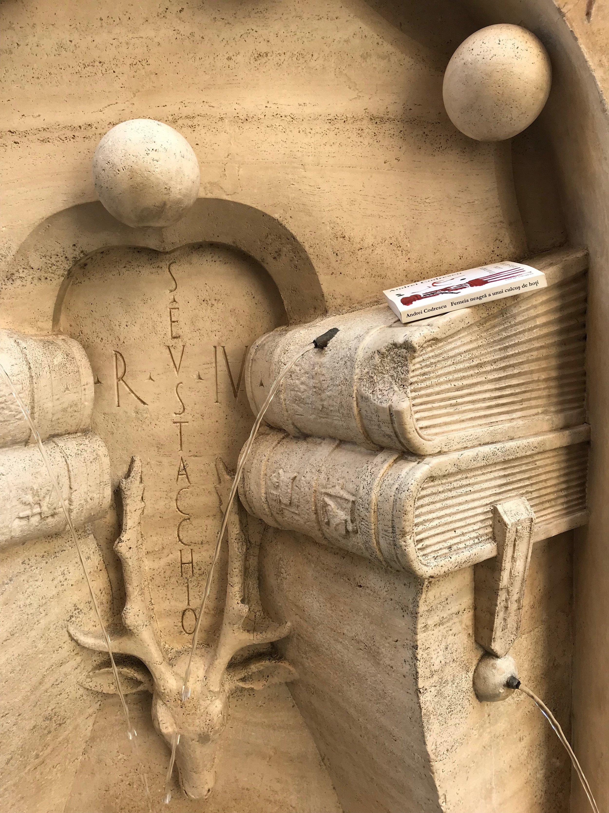 fontana de la sapienza w Codrescu book_SIDE.JPG