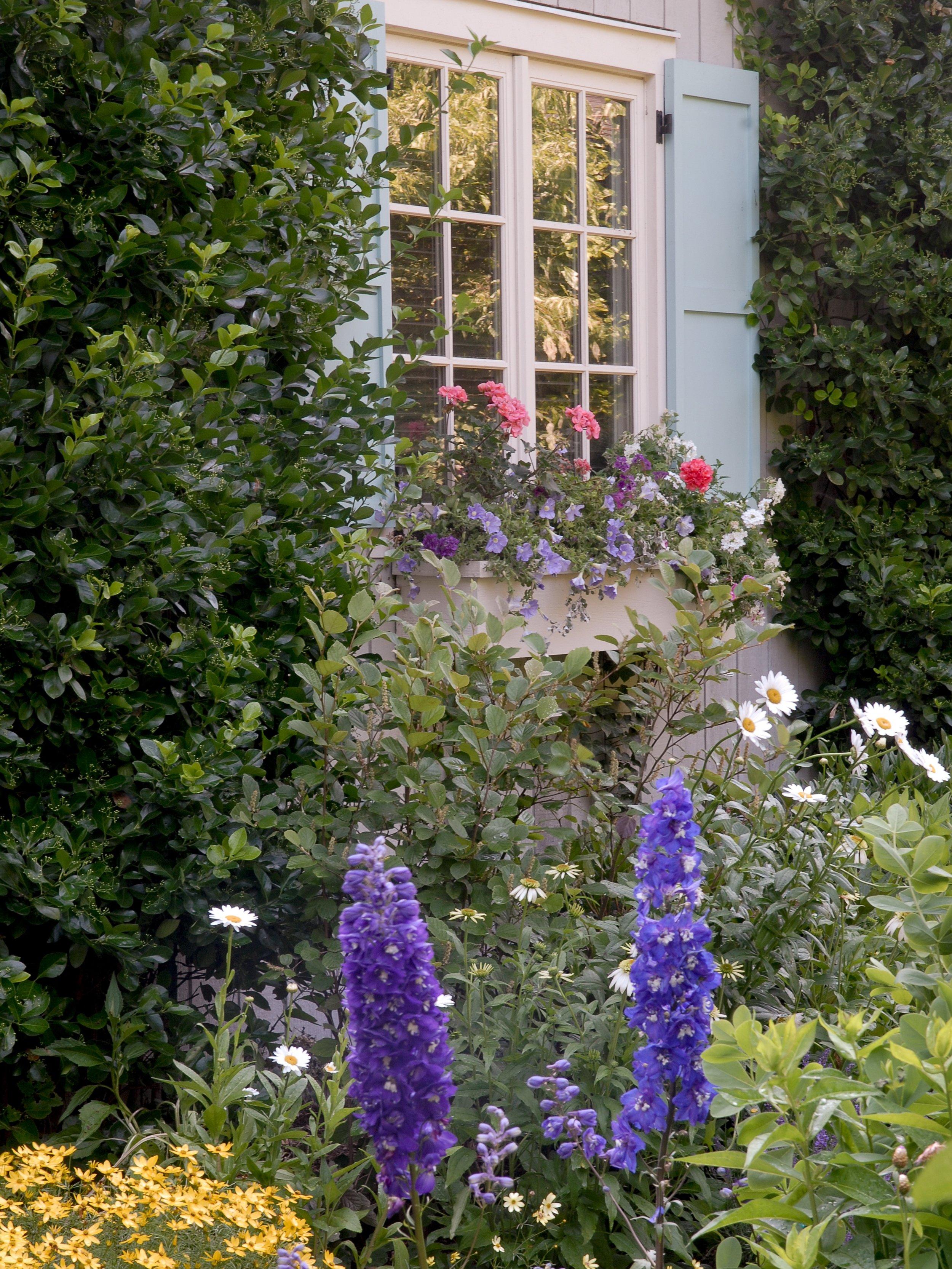 gardennew9.jpg