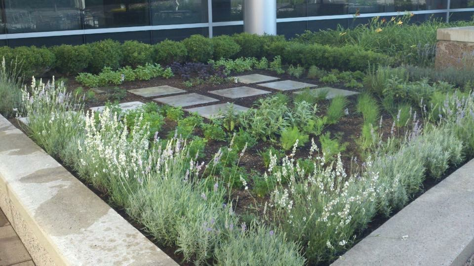 UBS WorldHeadquartersStamford, Connecticut  - Culinary Roof Top Garden Design / Installation