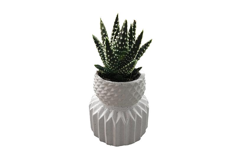 KIPIK-succulent-concrete-planter