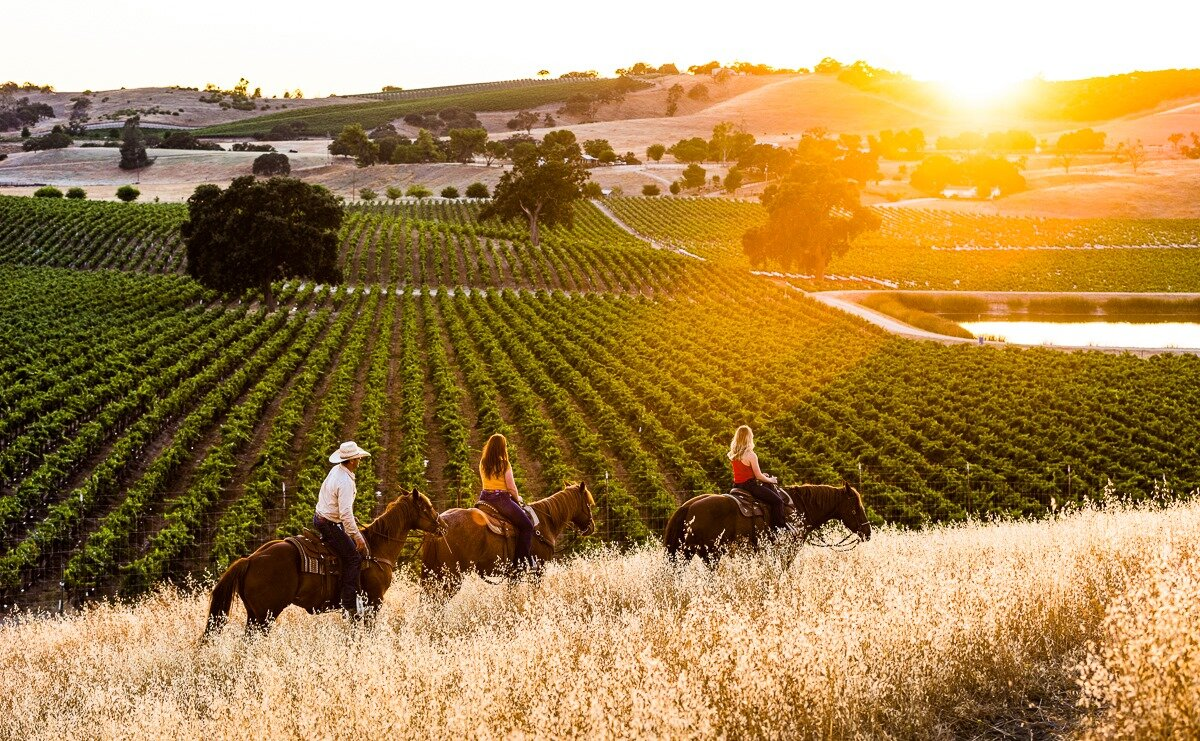 paso robles wineries - cass winery