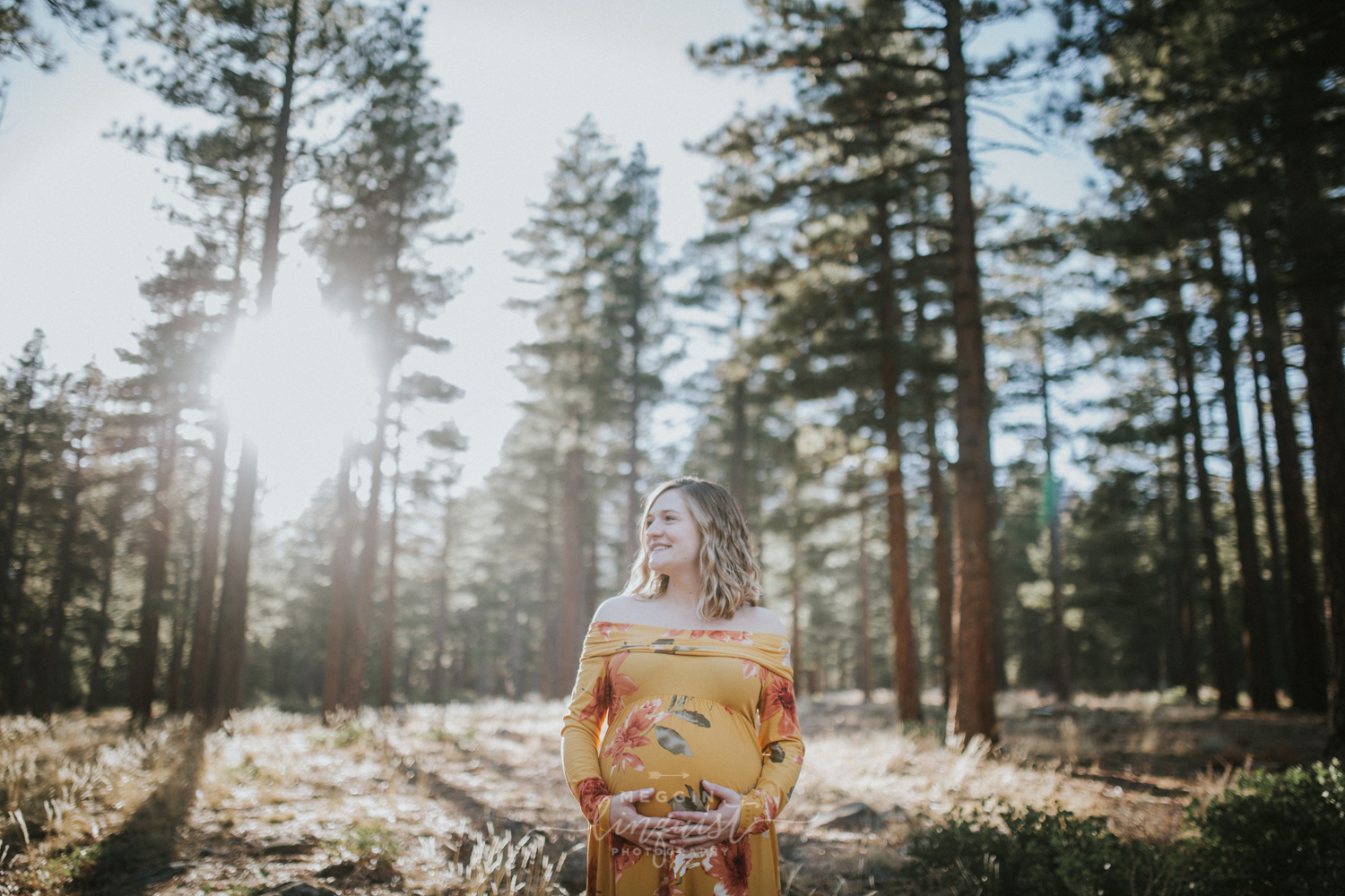 maternity-in-the-forest-photos-reno-lake-tahoe-maternity-photographer-9.jpg