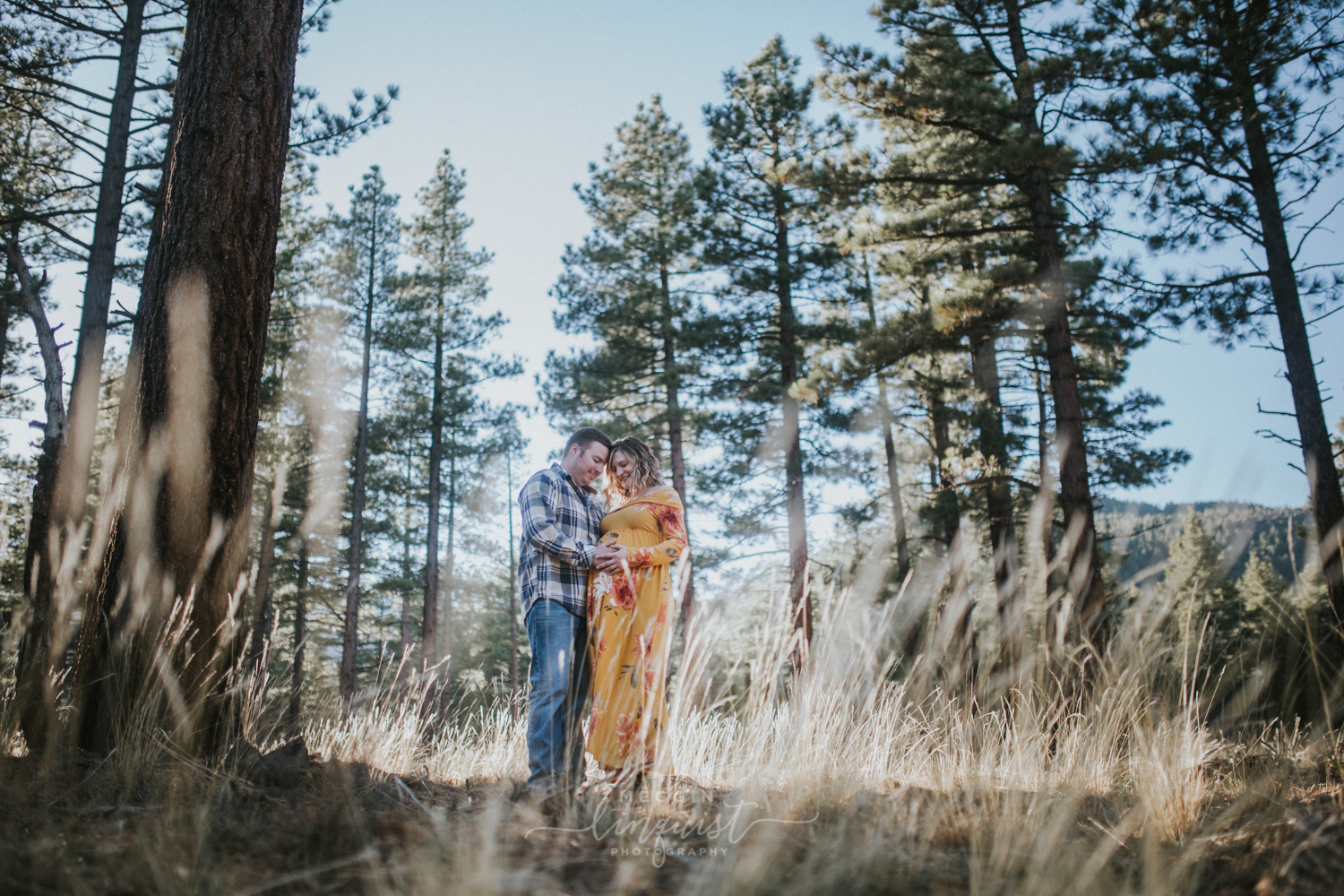 maternity-in-the-forest-photos-reno-lake-tahoe-maternity-photographer-16.jpg