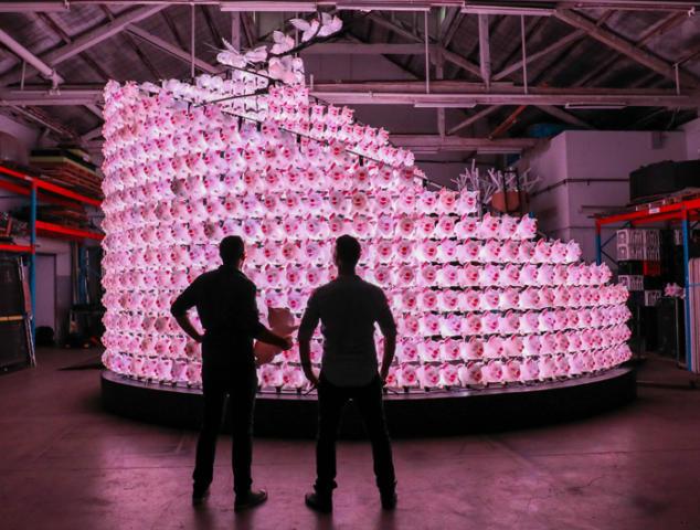 pigs-cny-lanterns-18-634x480.jpg
