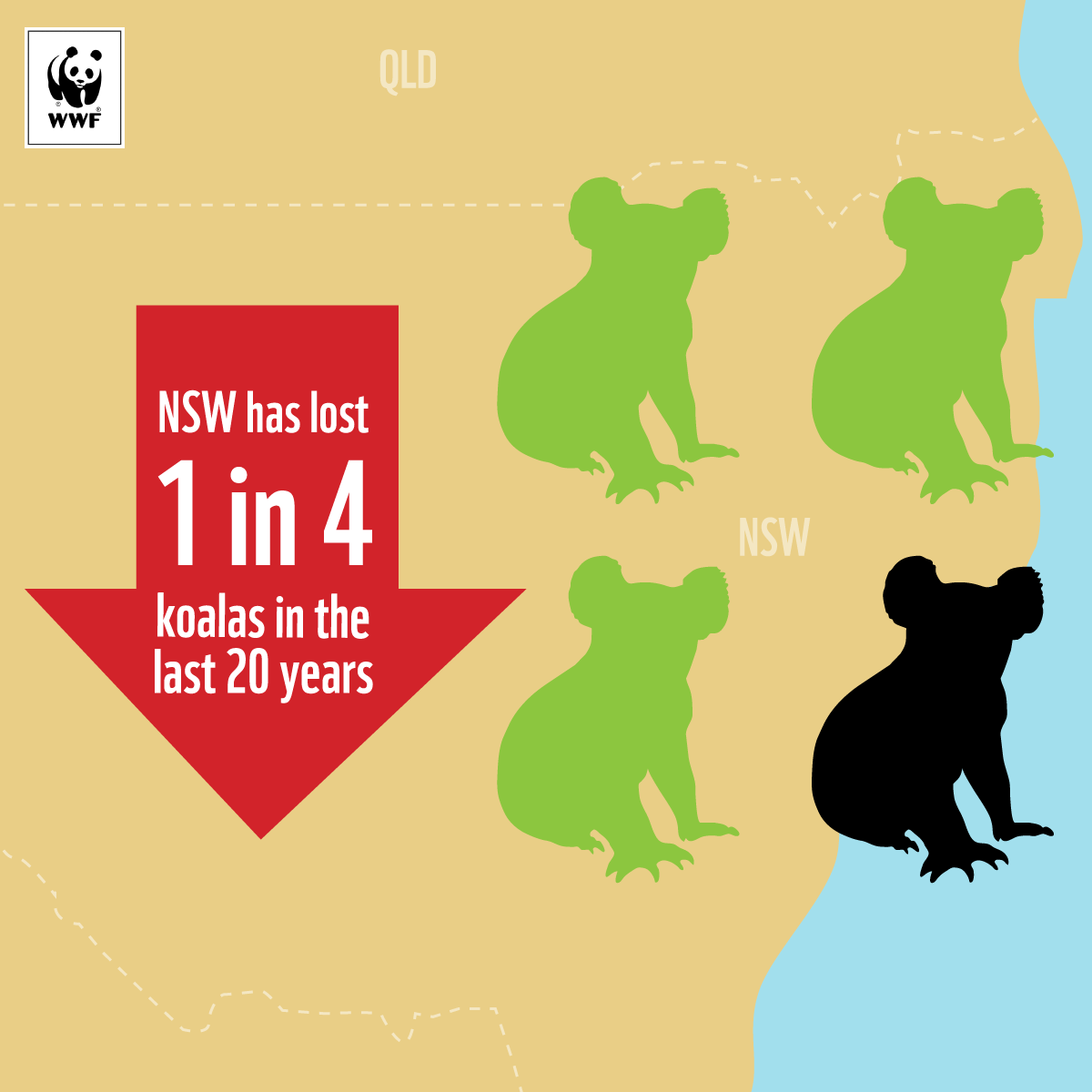 NSW-Koala-Map-Cropped.png