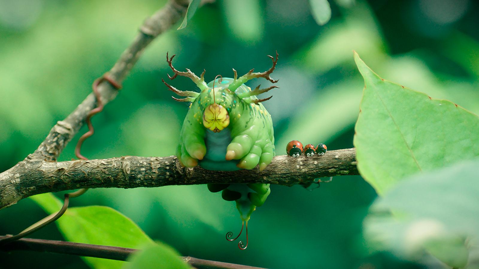 ladybugminuscule.jpeg
