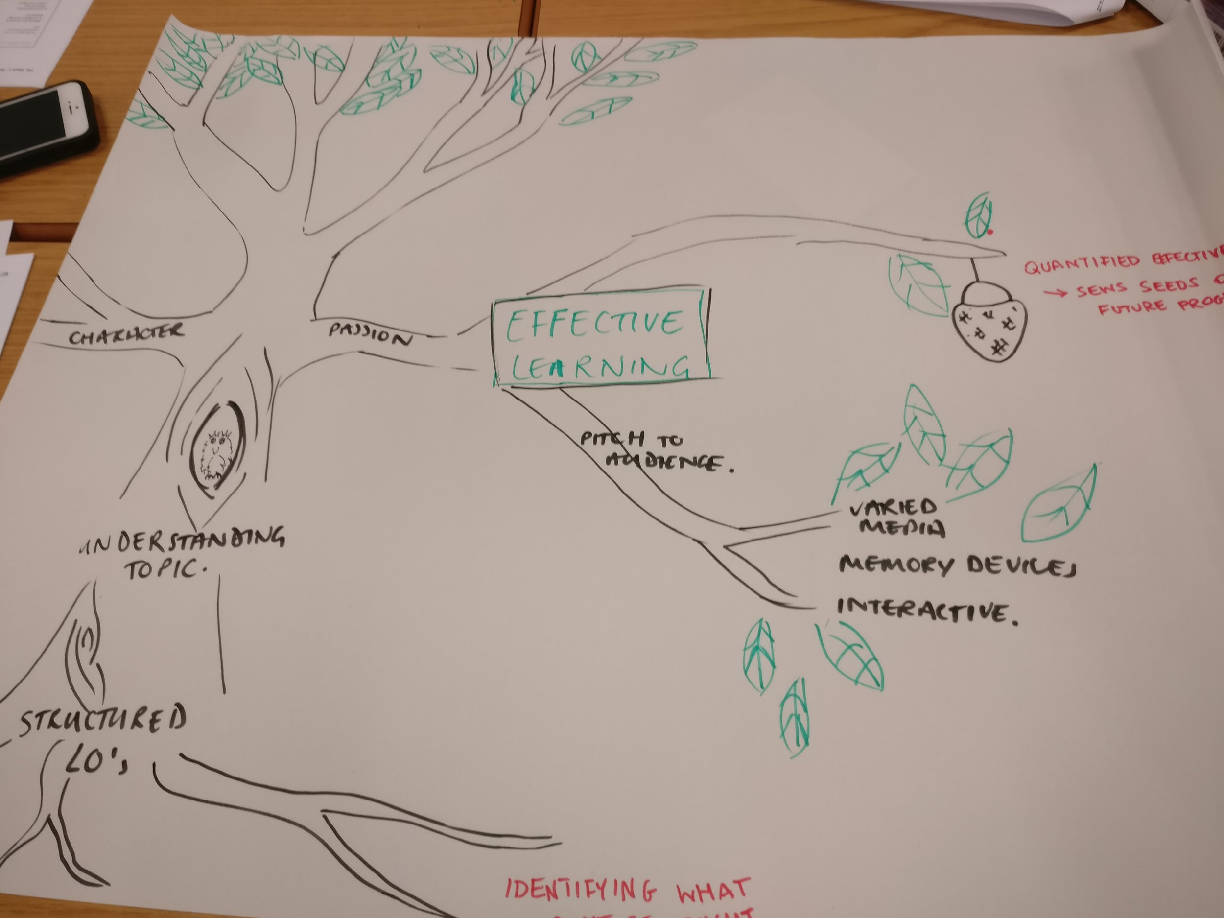 A visual diagram used to identify important components of teaching