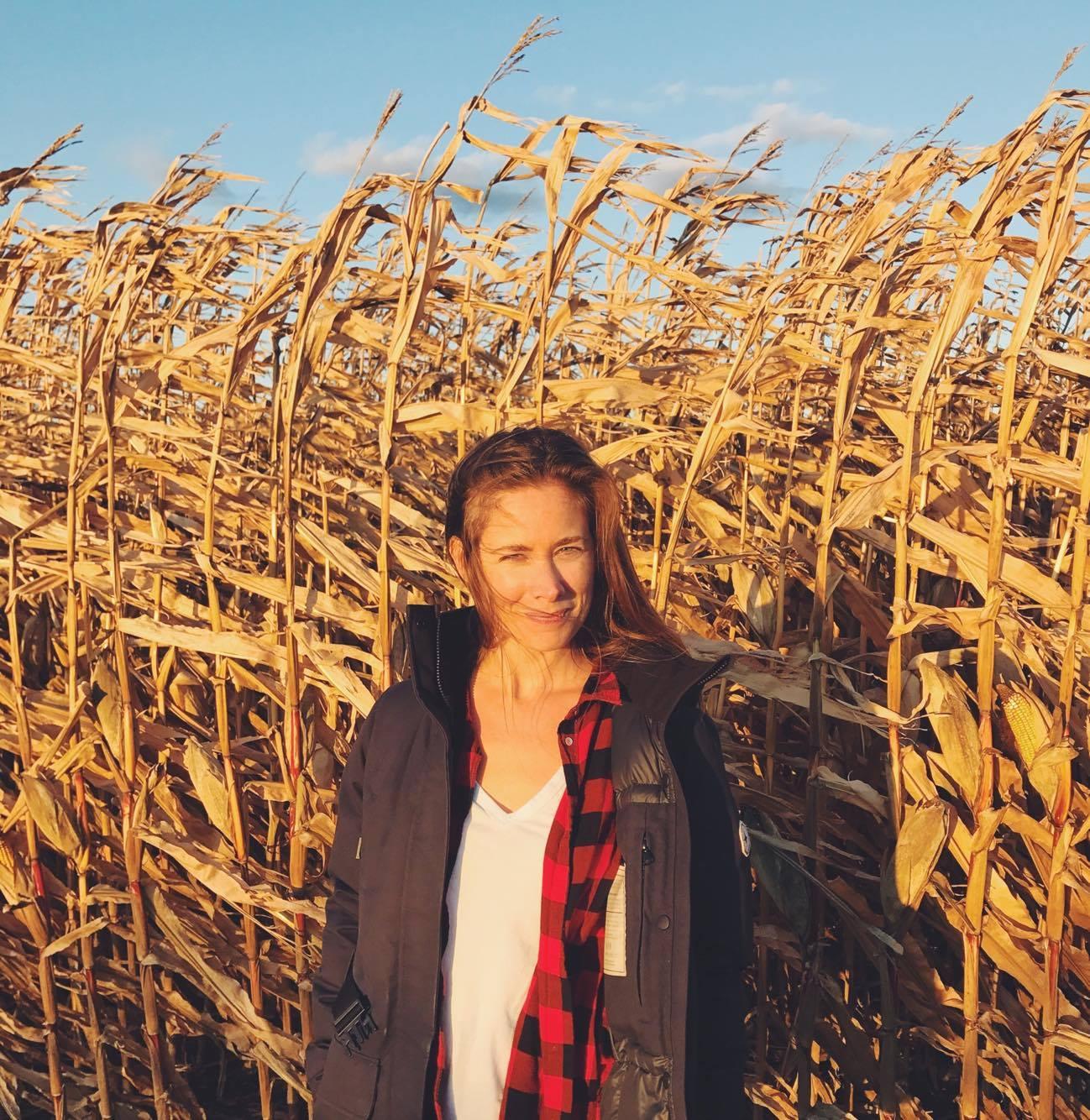 Corn Fields.jpg