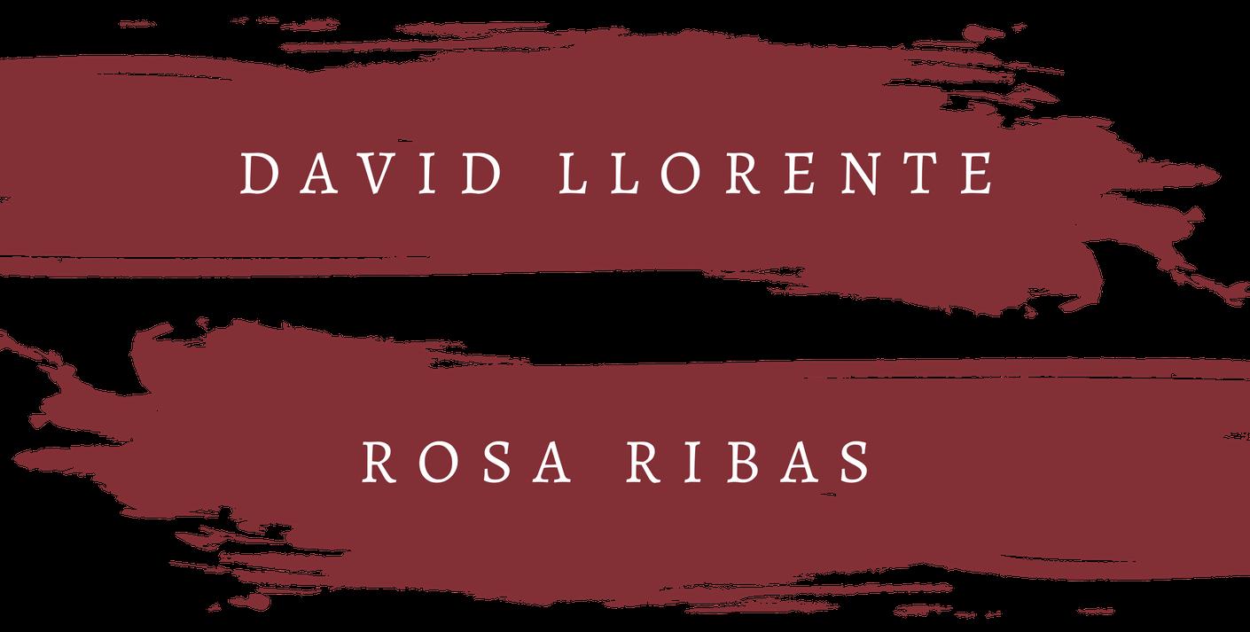 1.David y Rosa.png