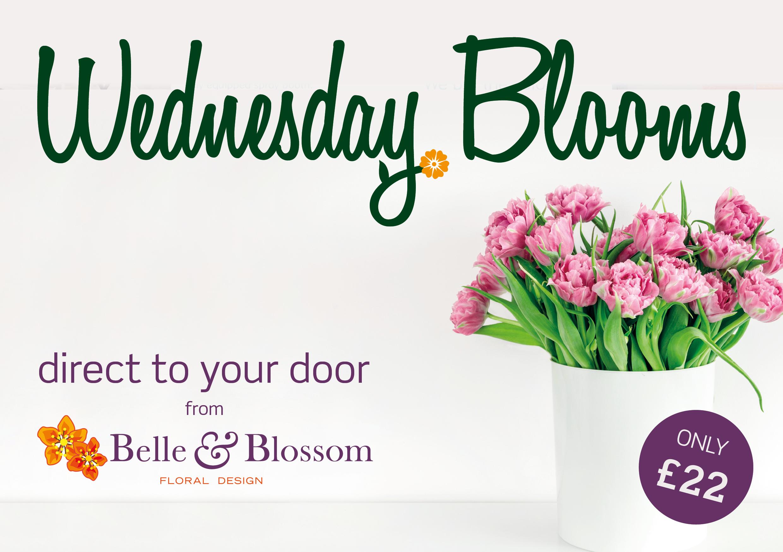 belle and blossom.jpg