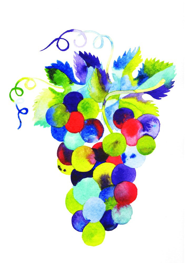 """""""Grapes""""Watercolour on Paper, 2017  Available as an Archival Print here."""