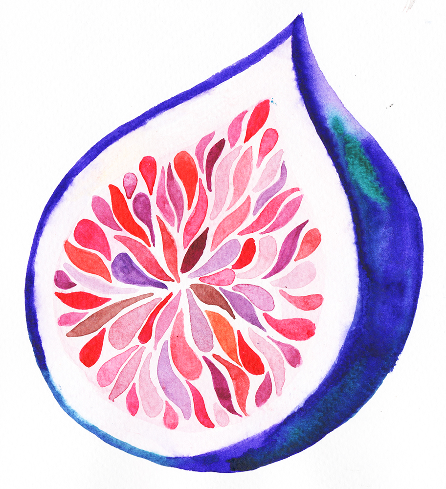 """""""Fig"""" Watercolour on Paper, 2018"""