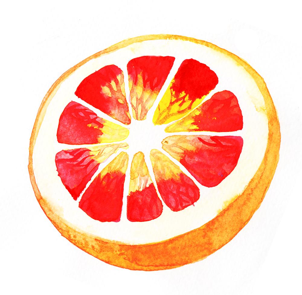 """Blood Orange""Watercolour on Paper, 2018"