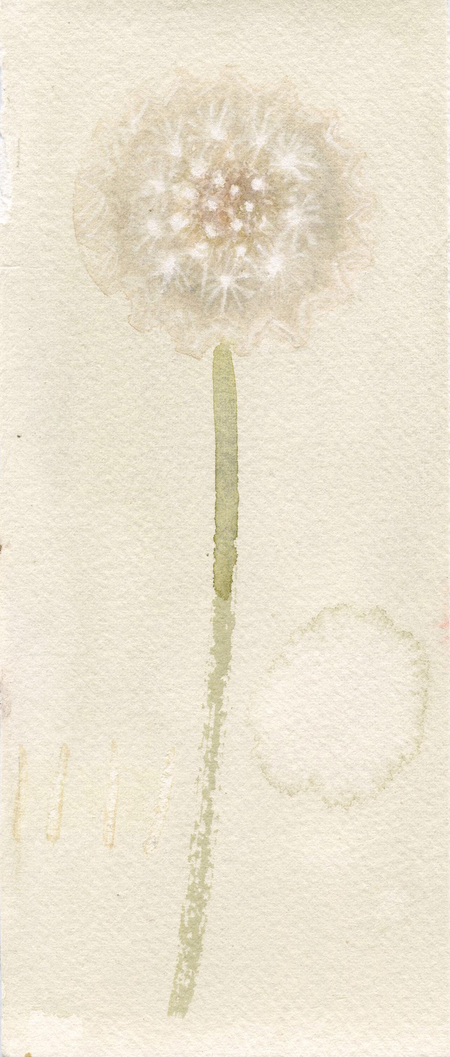 a wish   watercolour  11x21cm