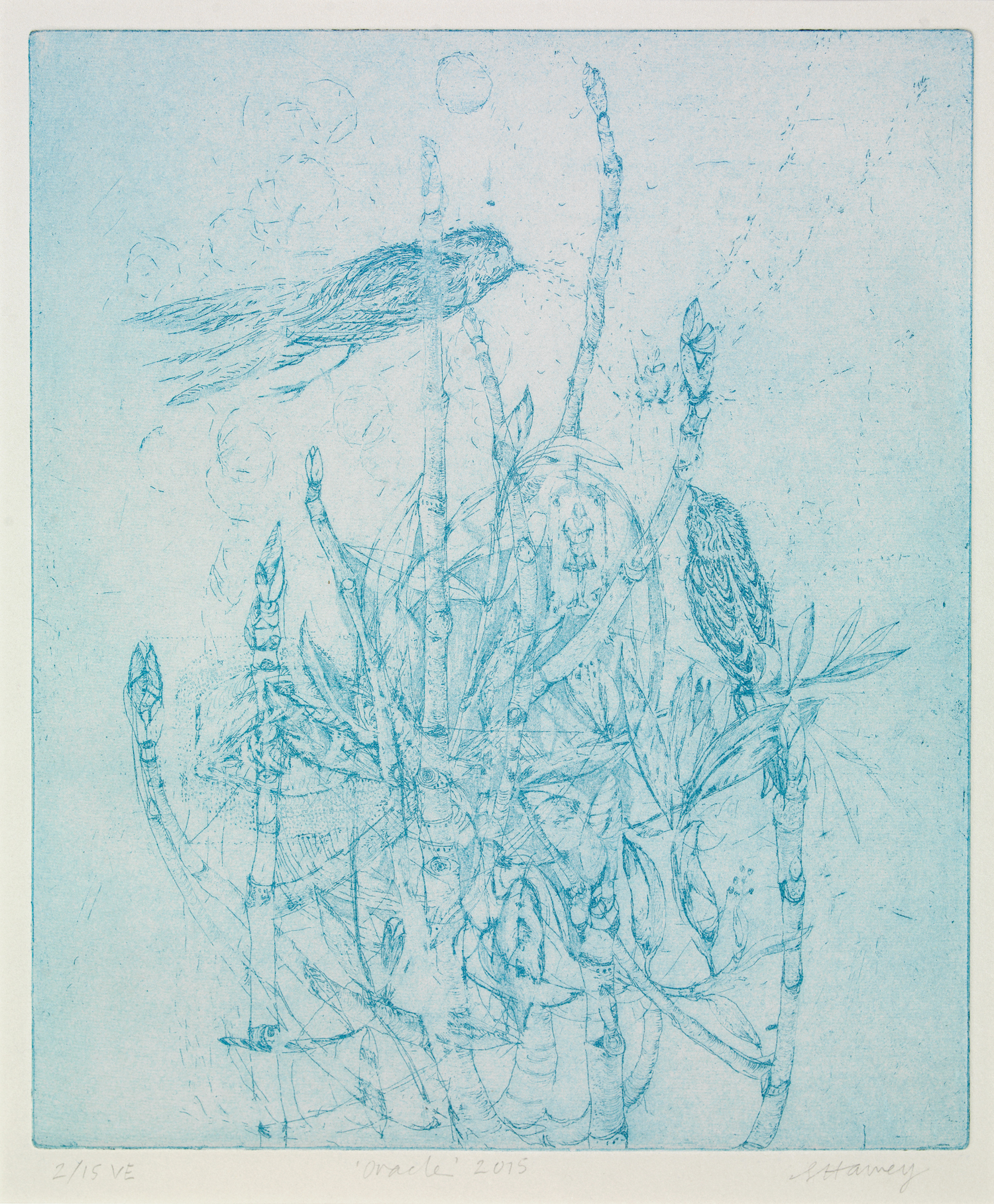 oracle   hard-ground etching on BFK rives  2/15ve  34x29cm