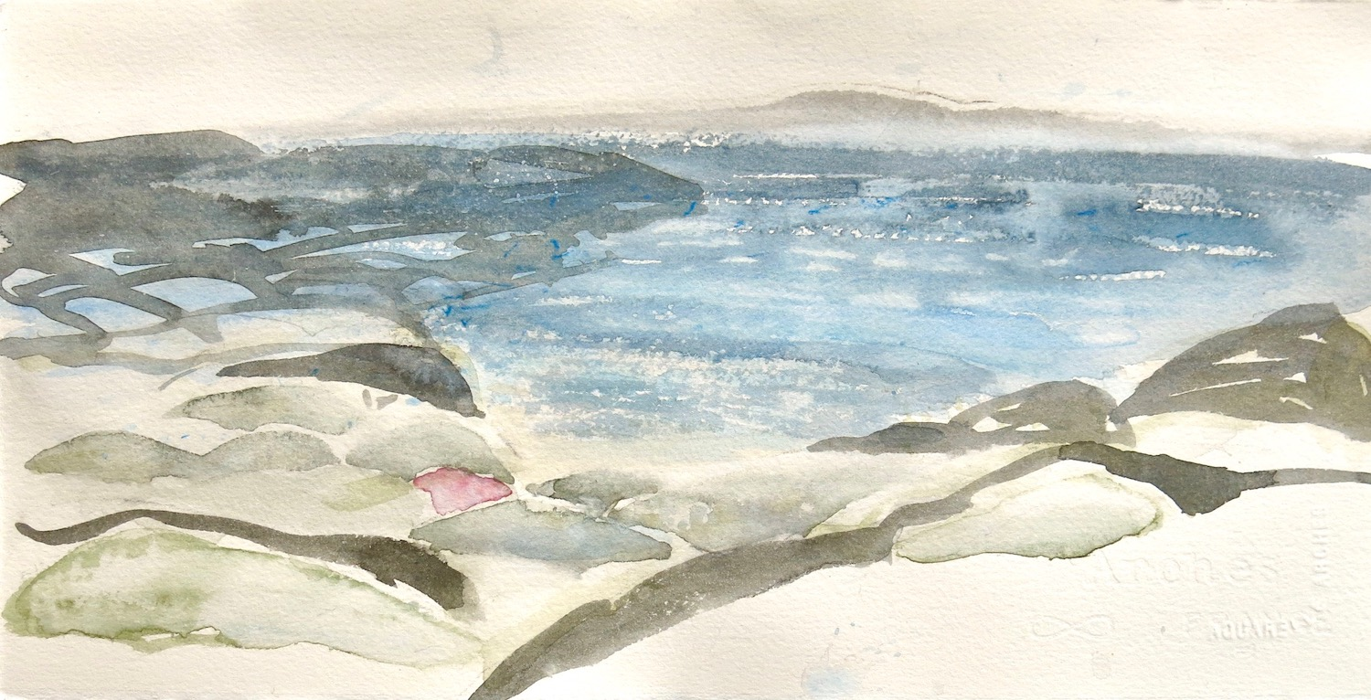 below the abbey, breezy day, oystercatchers - watercolour on paper   20x38 cm