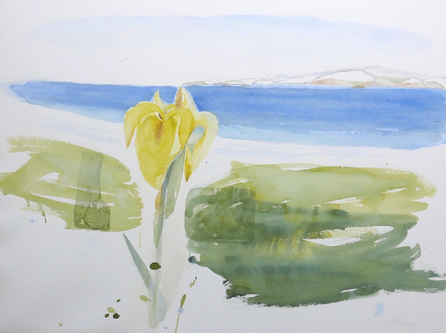 the meadow and The Sound, Iona - watercolour on paper  53 x 70 cm