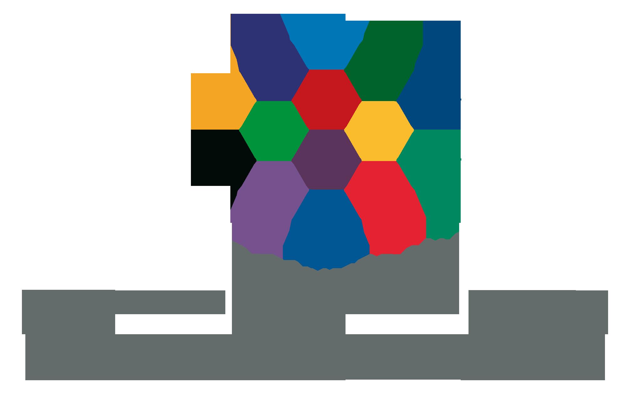 CIMVDL - Comunidade Intermunicipal Viseu Dão Lafões.png