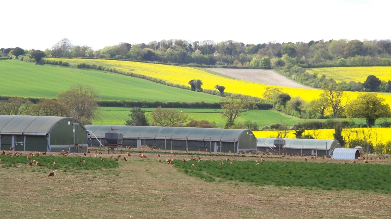 ....  The UK's leading supplier of organic poultry feed  ..  Cyflenwr bwyd dofednod organig mwyaf blaenllaw y DU  ....