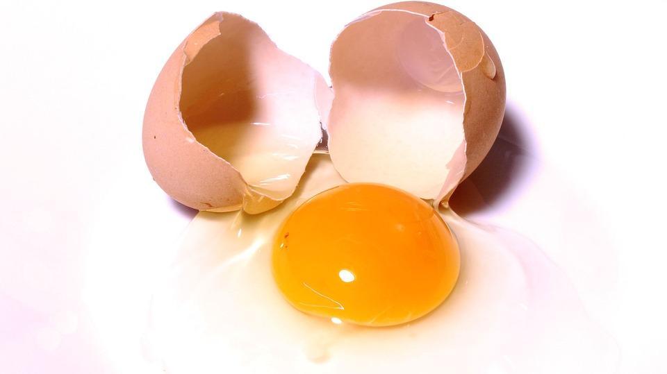 floor eggs.jpg