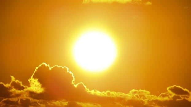 heat stress in layers