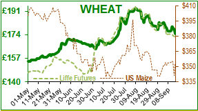 Wheat.png