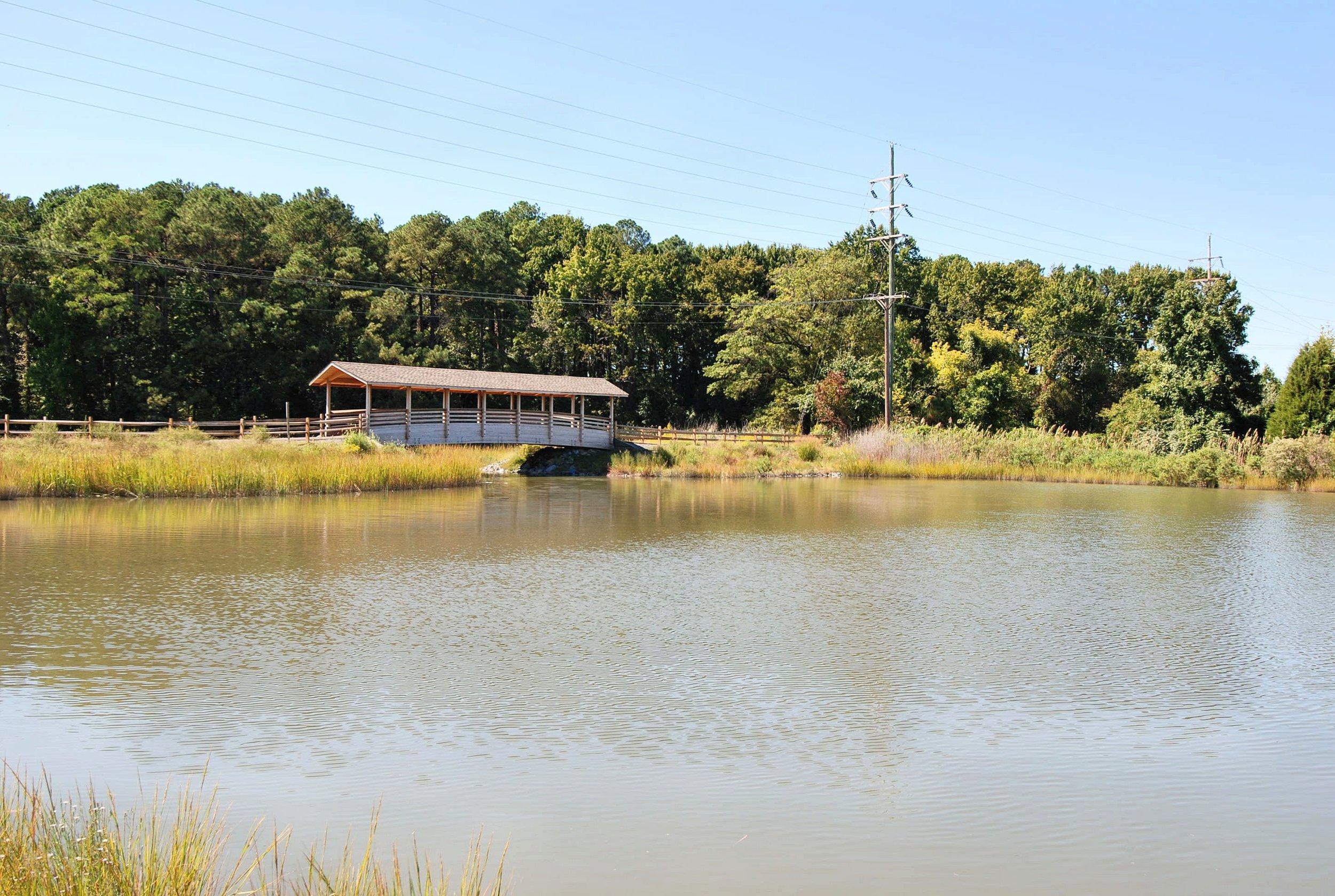 Amenity-Saint Michaels Pond-DSC_0842.JPG