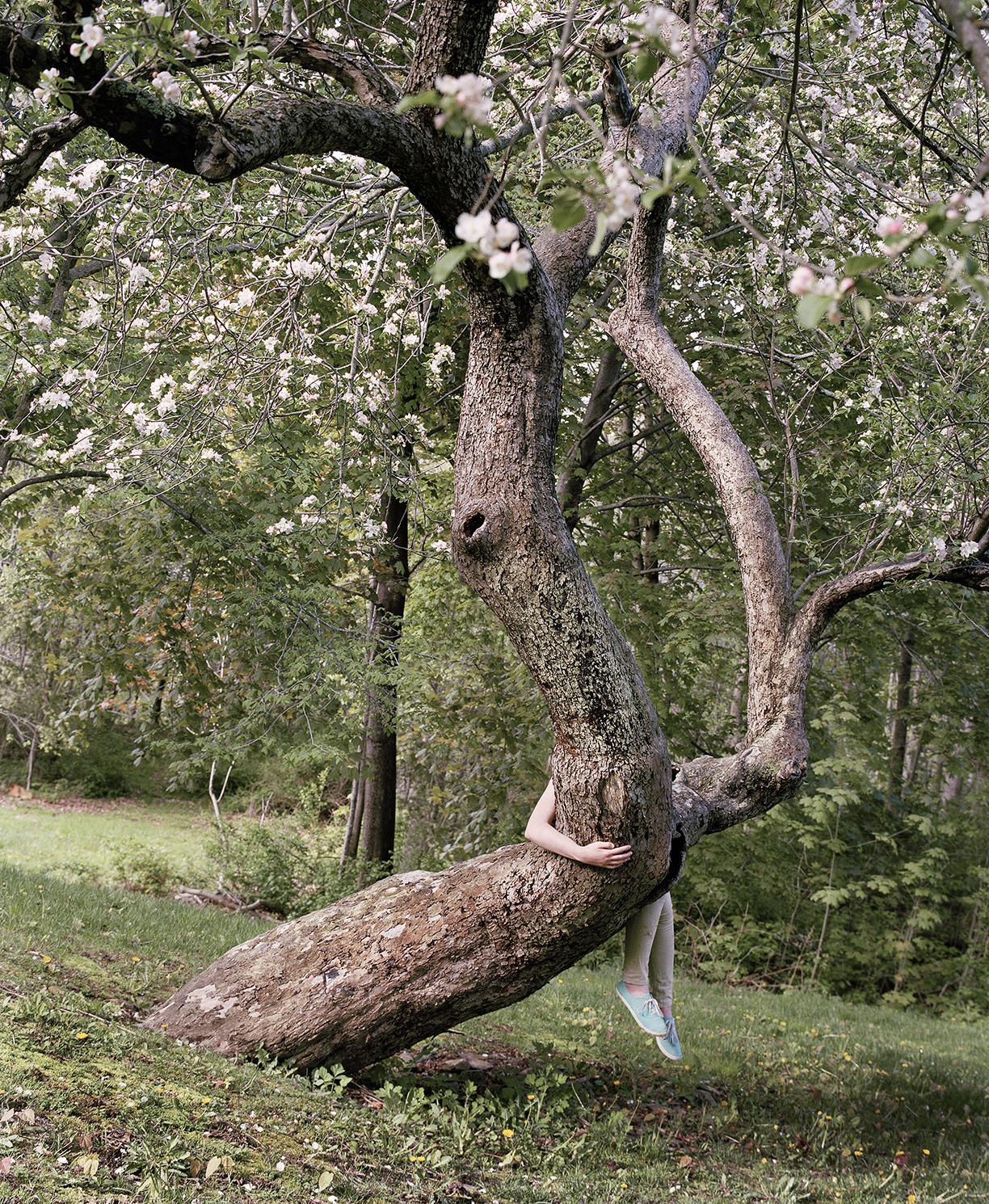 Riding the Apple Tree