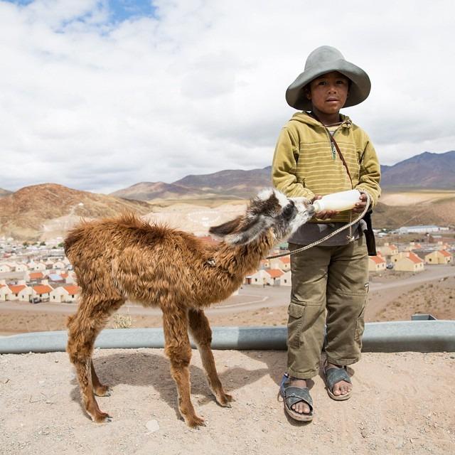 A boy and his llama #antarcticaordie (at San Antonio, Salta, Argentina)