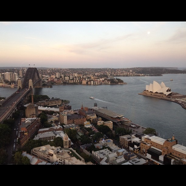 Best view of Sydney Harbor (at Blu Bar On 36)