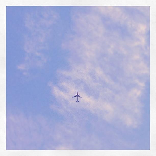 Fly away. Instagram photo taken from Hoboken