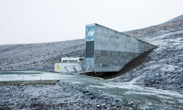 The Svalbard Global Seed Vault in the Arctic was designed to withstand a nuclear bomb and, in the event of an apocalypse, act as a Noah's Ark for plants.  It was designed to be a a beacon, a symbol of hope looking out over the  over the Barents Sea. Built in 2008 by the Norwegian government (for $9 million), it houses 526,000 samples of seeds; scientists hope these might be interbred in order to adapt global agriculture to climate change, thereby averting mass starvation.    The vault extends 146m into the sandstone mountain; at the end, there are three airlocked refrigerated caverns with space to preserve up to 4.5 million strains of plants.  Full story  here .