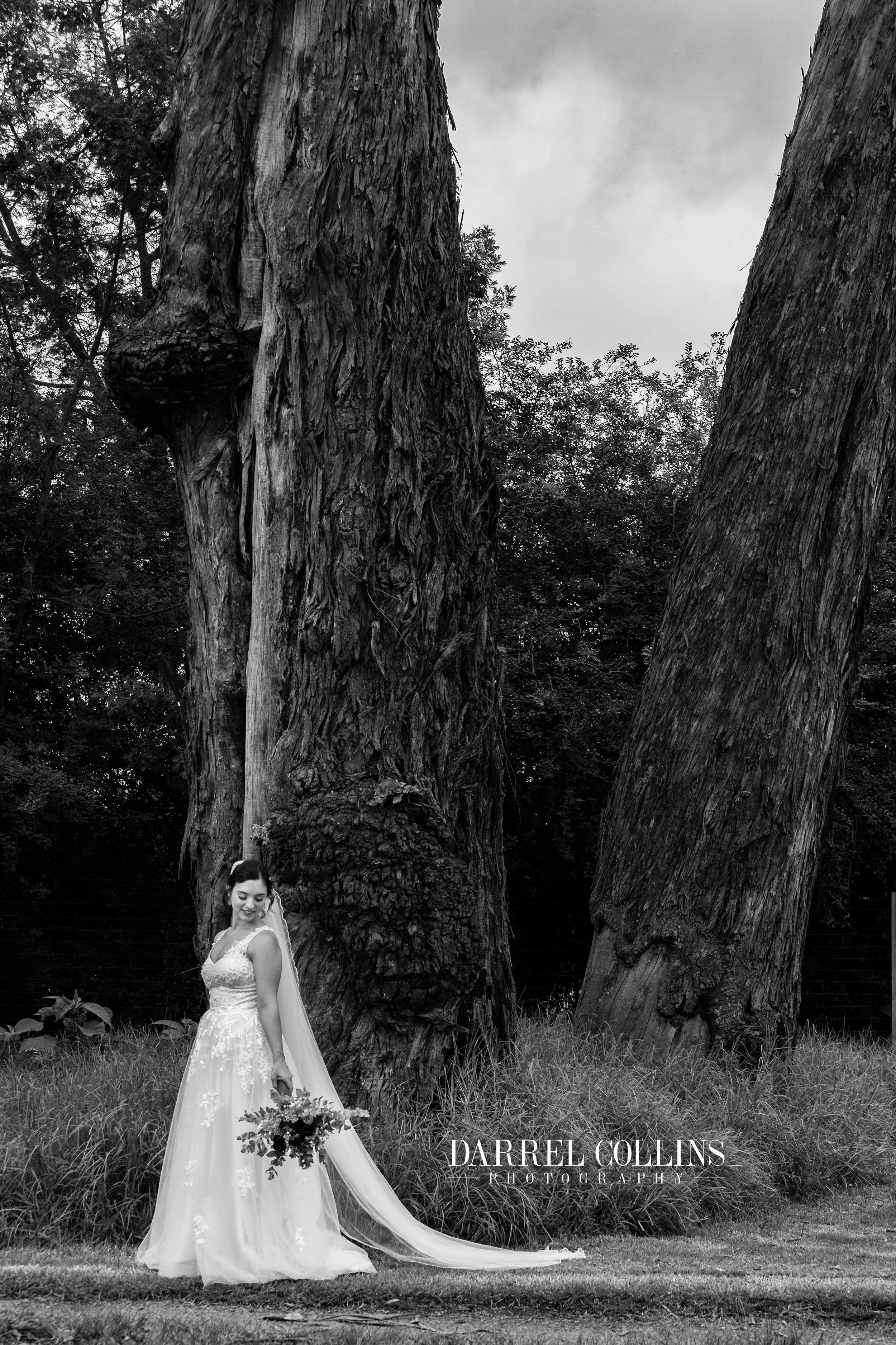 Amy & Wes wedding-3.jpg