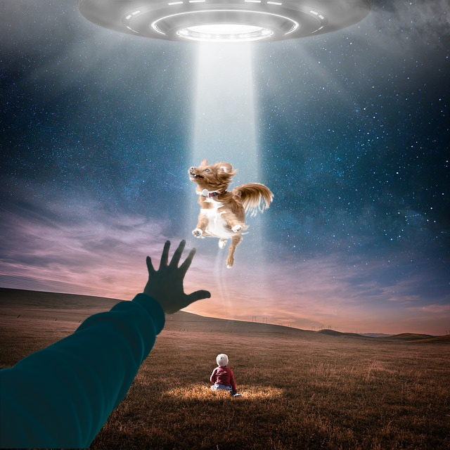 **COMING SOON** TEAM UFO: PET RESCUE - The Earth is being attacked by aliens, but they do not want to destroy our planet or harm any humans ... They've come for our pets!Will you and your friends rescue these animals from the alien spaceship before it takes off or will you be trapped in the spaceship and lost in space forever?