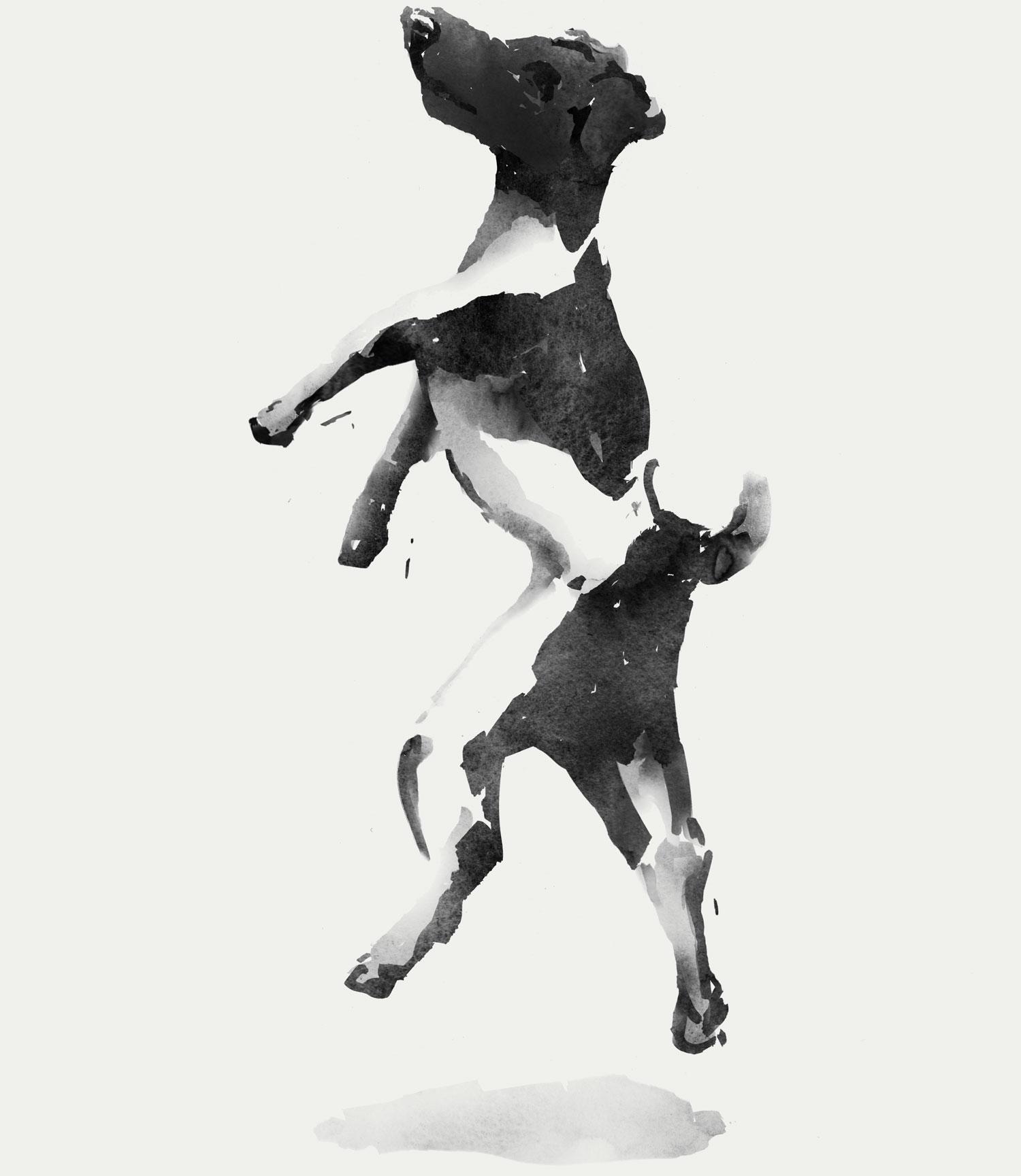 Watercolour illustration of VINIV's dog Bogarte