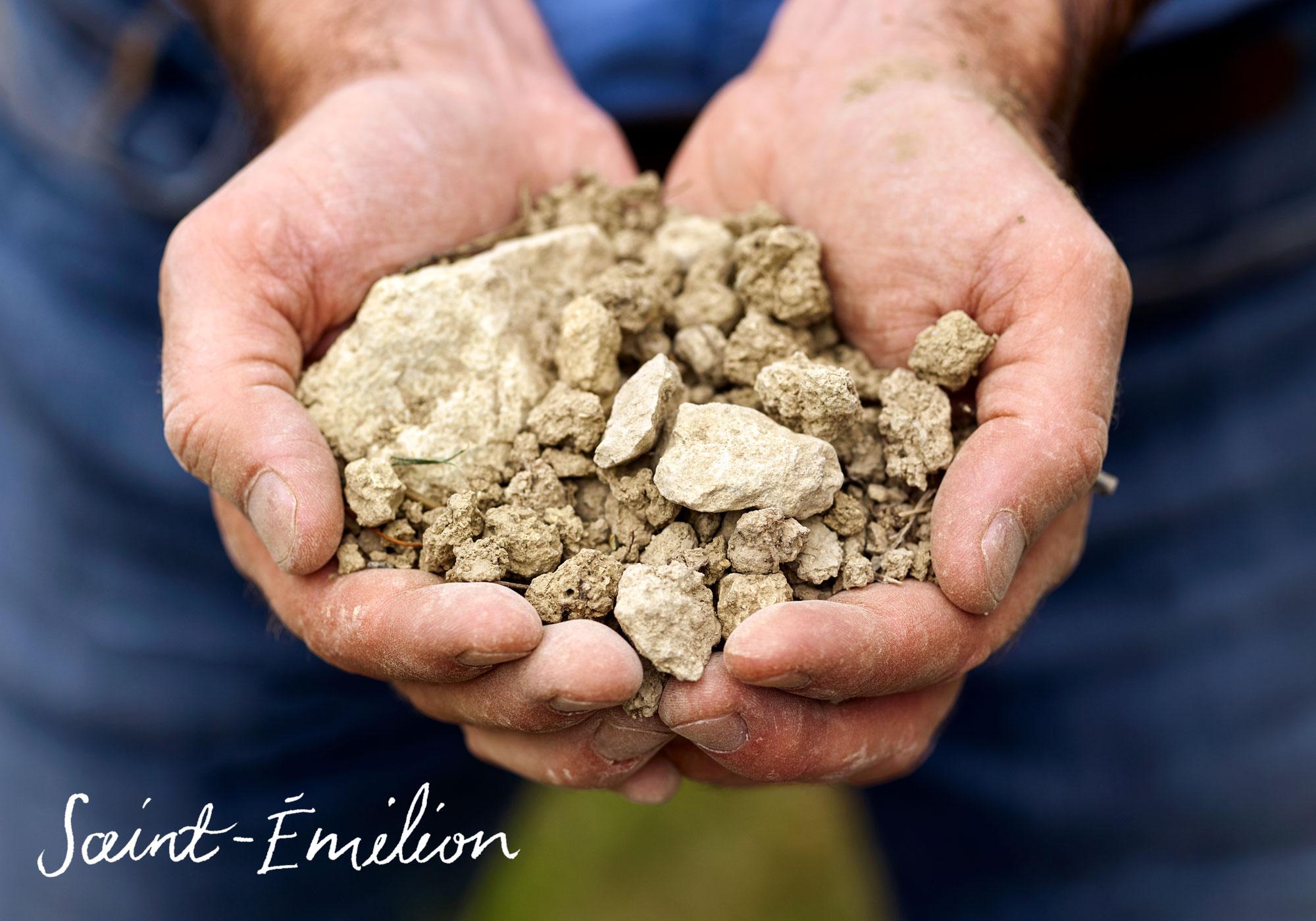 Saint-Emilion terroir from the Bordeaux wine region