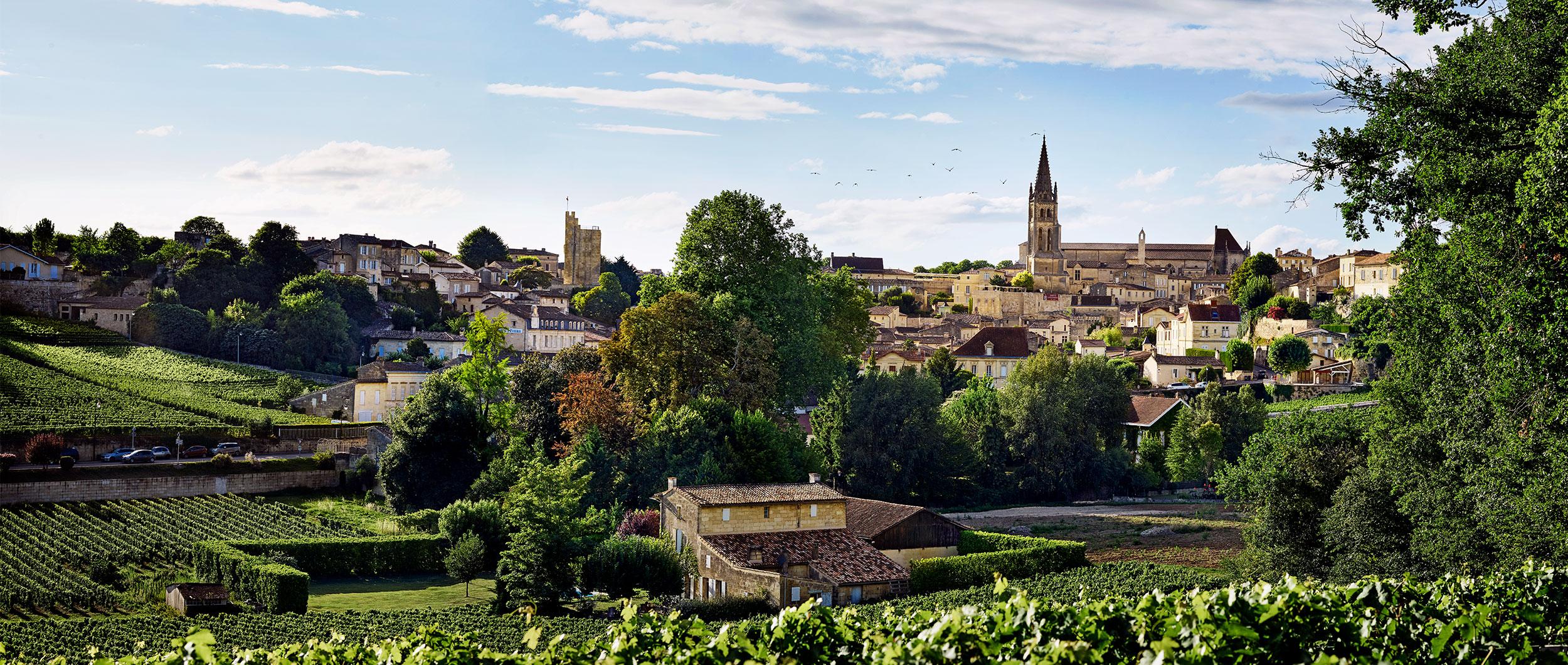 Explore Saint Emilion and Bordeaux wine culture