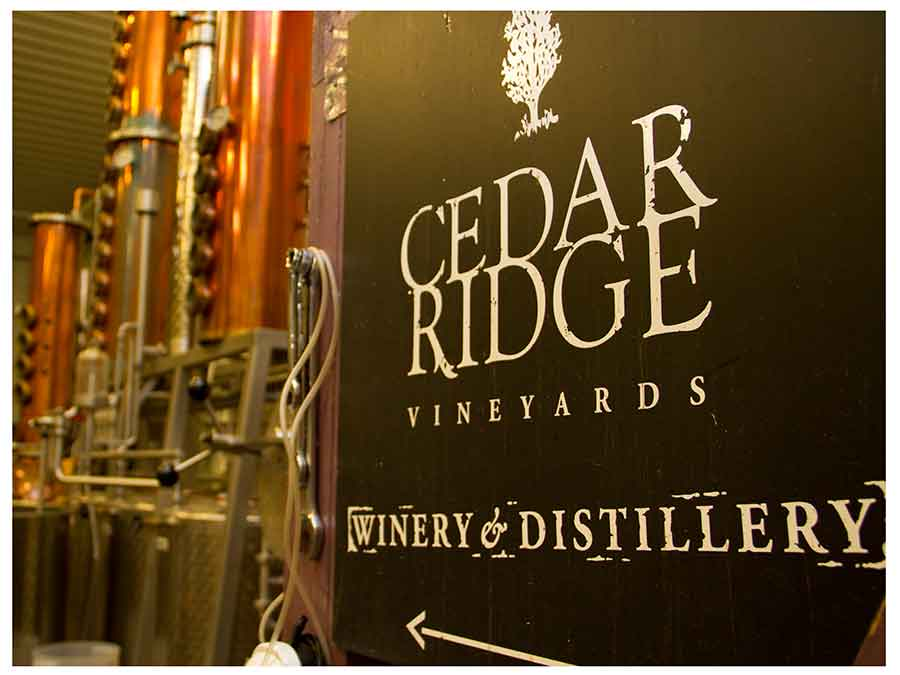 5.  Raise a Toast Together With Us - We'll meet at the popular Cedar Ridge winery and distillery to enjoy a pre-event cocktail party.