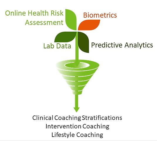 Coaching Model (2).png