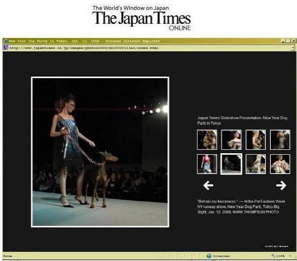 japan times 2008.jpg