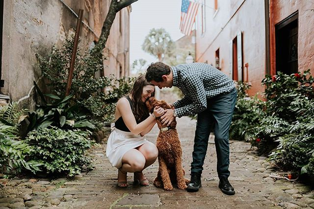 Hi, just a friendly reminder to bring your dog to your engagement sessions or we will cry. K thanks. #teambossforever