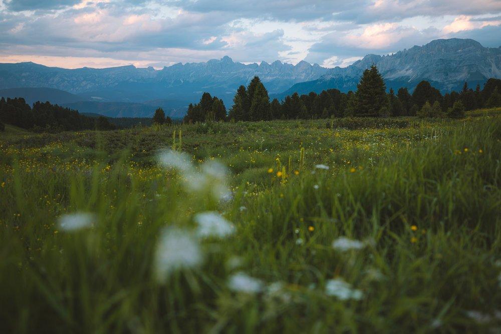 paysage donne envie montagne