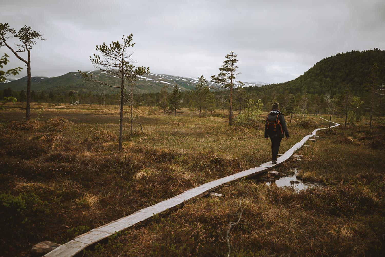 faire une promenade parc national anderdalen