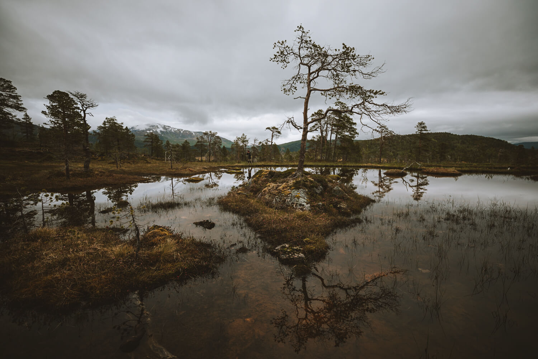 patrimoine naturel senja parc national