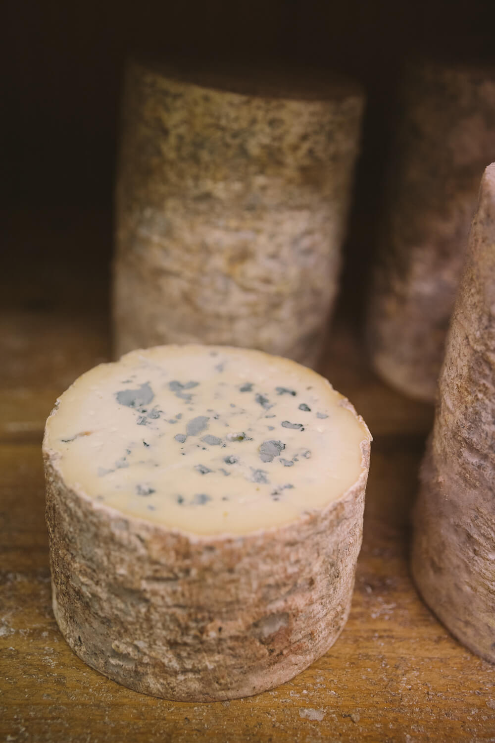 tomme fourme d ambert