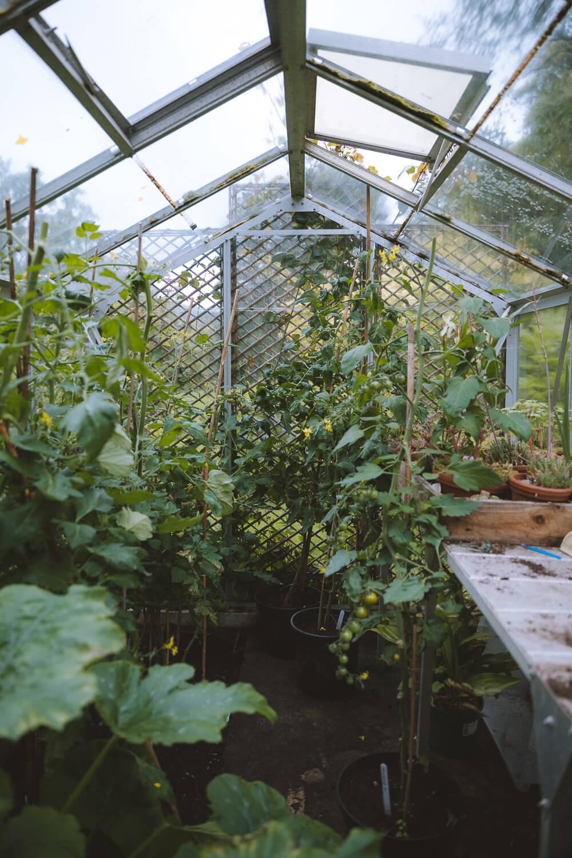 serre jardin rydal mount